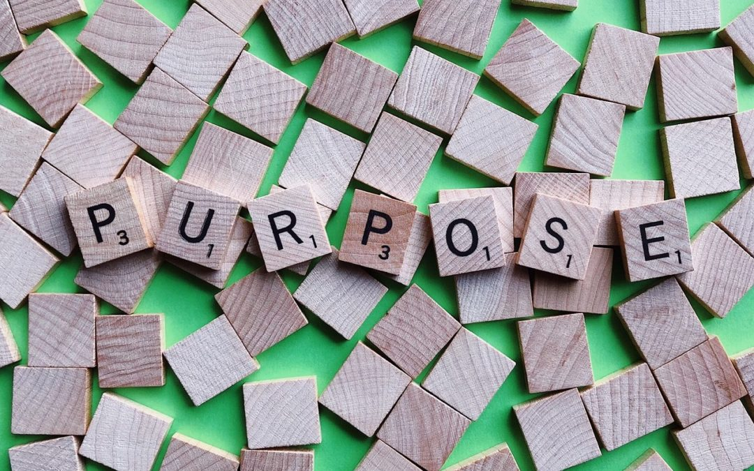 The Focus on Purpose