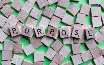 The Focus on Purpose